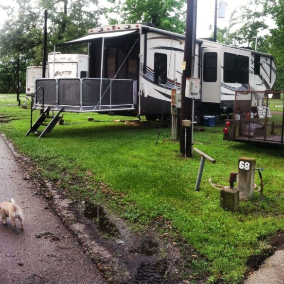 In Louisiana, the entire RV park was a muddy mess, so the only way to get to the street was to leave the patio set up with the steps leading to the road!